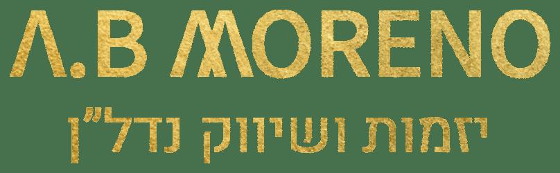 א.ב מוראנו לוגו