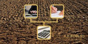 א.ב מוראנו איך ניתן לממן השקעה בקרקע