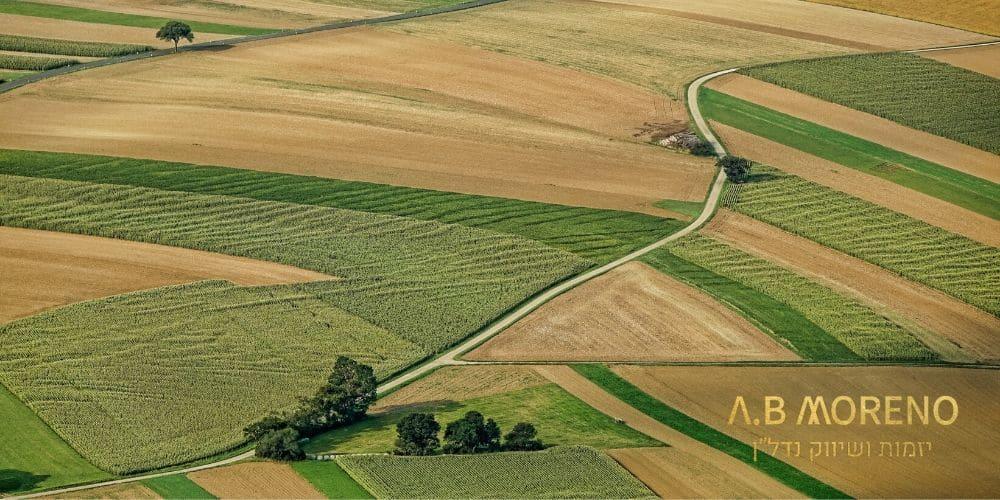 א.ב מוראנו למה לרכוש קרקע
