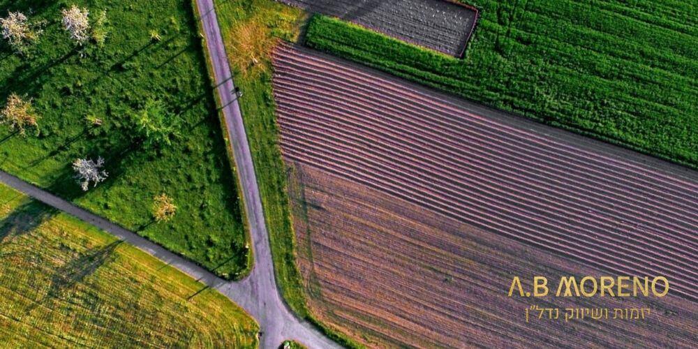 למה כדאי להשקיע במגרש חקלאי למכירה