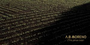 א.ב מוראנו אדמה חקלאית למכירה