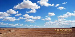 א.ב מוראנו קרקעות למכירה בדיקת קרקע חקלאית