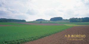 א.ב מוראנו קרקע חקלאית