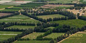 א.ב מוראנו קרקעות למכירה מהו גובה היטל ההשבחה על קרקע חקלאית וכיצד להפחיתו
