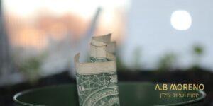 א.ב מוראנו קרקעות למכירה ההזדמנות שלך להשקעה נבונה