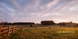 א.ב מוראנו קרקעות למכירה הפוטנציאל של קניית חלקה חקלאית