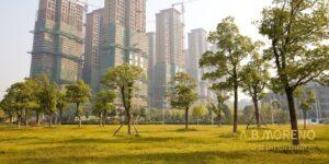 א.ב מוראנו קרקעות למכירה השקעה בקרקע או בנכס מסחרי