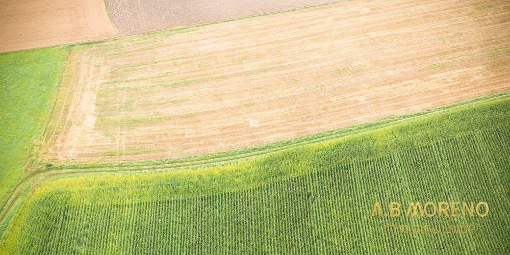 אצלנו לא קונים אדמה אצלנו ממשים קרקע א.ב מוראנו קרקעות למכירה