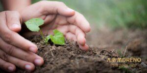 התשואות הצפויות על השקעה בקרקע באזורי ביקוש א.ב מוראנו קרקעות למכירה