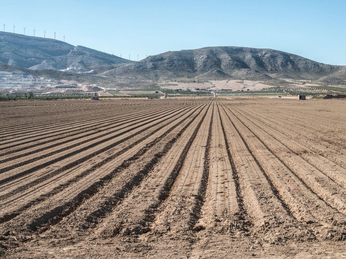 <h3>בדיקות קרקע לחקלאות  – ההבדל בין הצלחה לכישלון</h3>