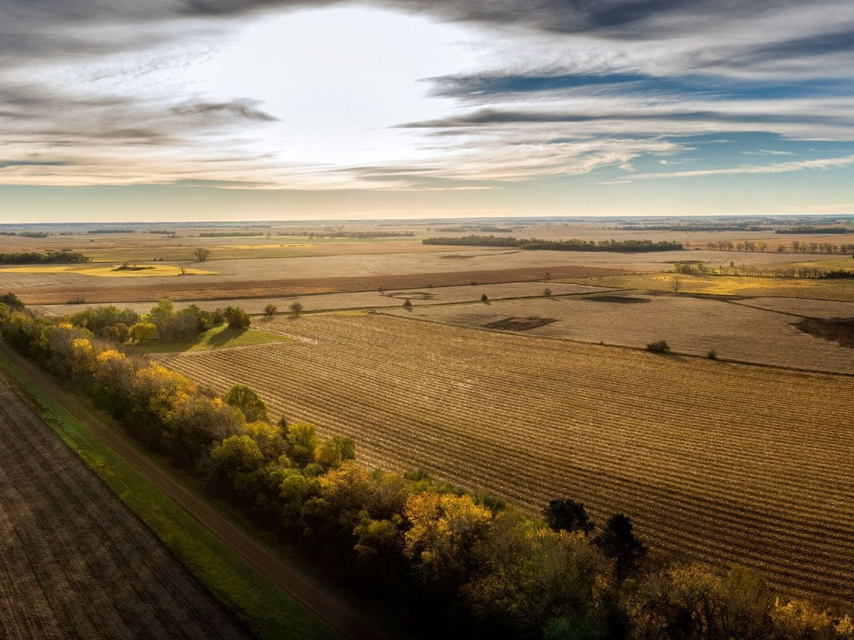 <h3>מה הפוטנציאל של קרקע חקלאית?</h3>