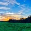 <h3>אדמות למכירה בדרום – ממה צריך להיזהר?</h3>