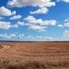 <h3>קרקע חקלאית להשקעה בשרון – הזדמנות שלא תחזור</h3>
