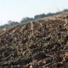 <h3>היתרונות של קרקע חקלאית למכירה</h3>