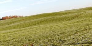 קרקע לא מופשרת א.ב מוראנו קרקעות למכירה