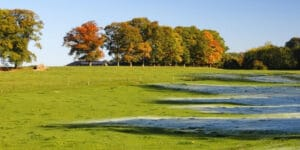 קניית קרקע לא מופשרת אב מוראנו קרקעות למכירה