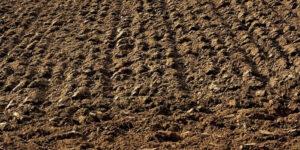 קניית קרקע