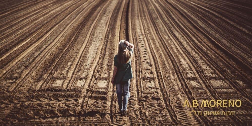 מהי קרקע – בניגוד למקובל לחשוב, לא ניתן לבנות את בית החלומות על כל קרקע. הכירו את כל סוגי הקרקעות!