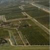 <h3>קרקע חקלאית</h3>